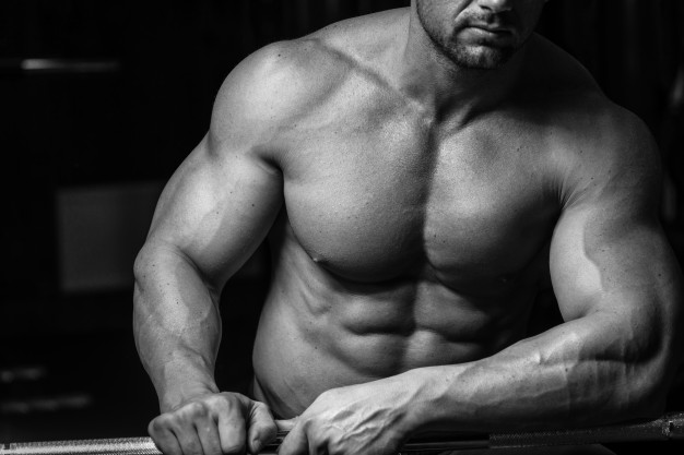 Ripped muscles definition