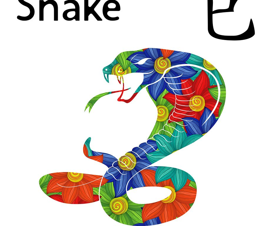 Quick facts about Snake
